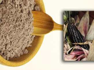 3e3a98fd4a85528336107eb240e6ca5e - Fialová kukuřice je nabitá antioxidanty