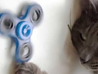 0ed490cc1402265ccd40bf90da9ab734 - Spinner: pekelná hračka nebo peklo z hračky?