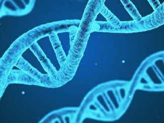 9683226671c2c8bb565b1dcb9fba2748 - Nemoc mohou spustit traumata našich předků