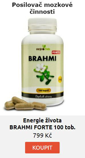 BRAHMI FORTE kapsle extrakt 50% bacopasidů 100 tob.