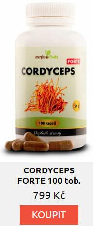 cordyceps forte - Laryngitida: Jaké má příznaky, jak ji léčit