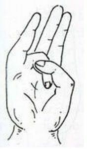 surya 176x300 - Mudry: léčivá síla v našich vlastních rukou