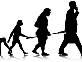 Předci člověka byli skoro všichni vegetariáni.
