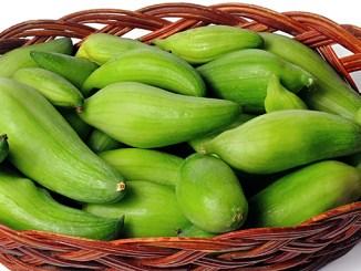 Caigua cholesterol opravdu léčí, potvrzují vědci.