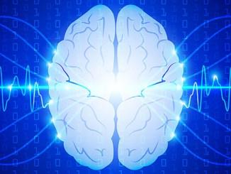 Posílení mozku a paměti za pomoci 9 potravin.