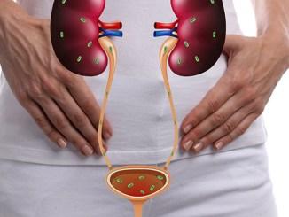 Infekce močových cest trápí vegetariánky méně.