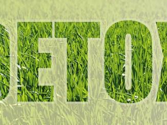 Jarní detoxikace pro zdravé tělo plné energie.