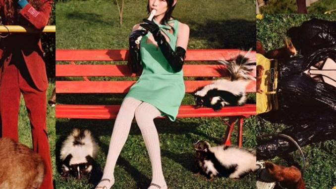 Gucci, přestaňte zneužívat v reklamě divoká zvířata.
