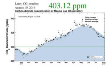 CO2 Article 2