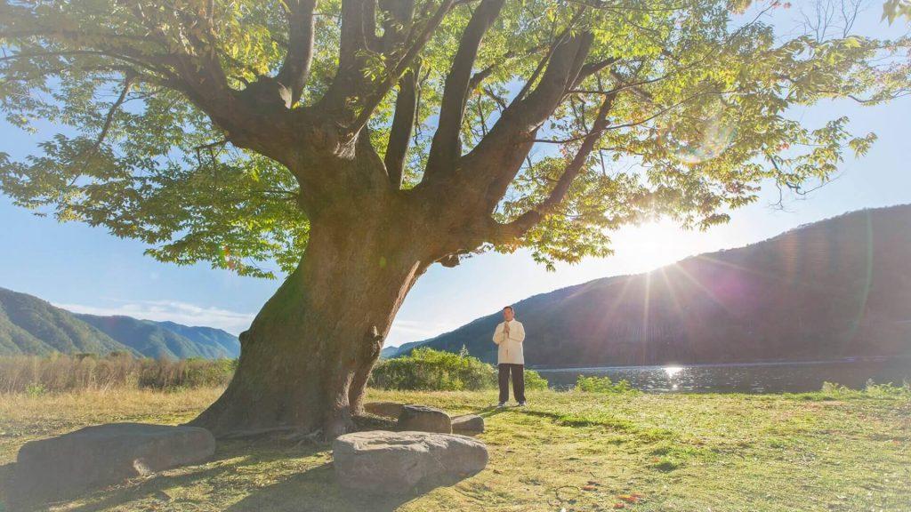 八卦內功健身中心-金菩提宗師生命能量養生保健身體心靈健康