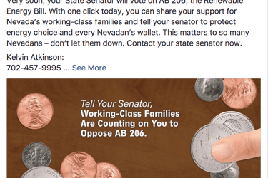 A Secure Nevada's Future Facebook against AB206