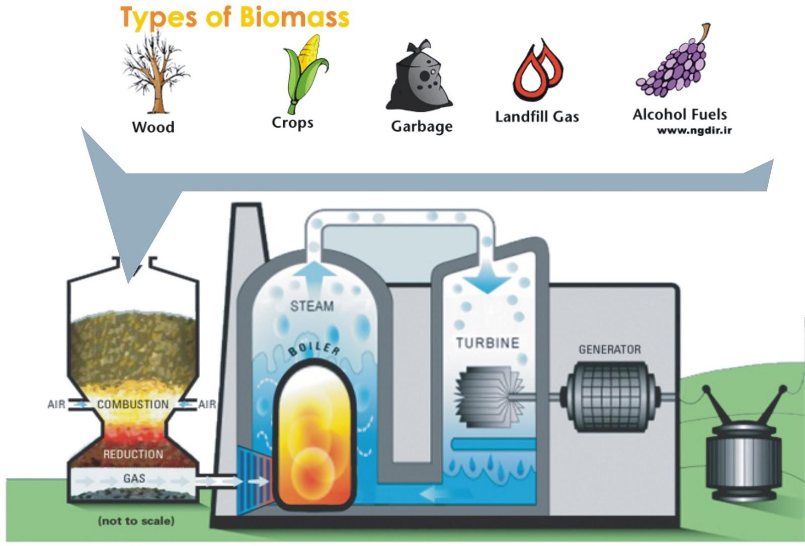 Renewable Energy Explained
