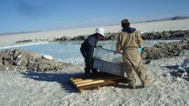 Photo of La industrialización del litio causará al menos tres efectos ambientales