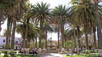 Photo of Gobierno proyecta una inversión de $us 5.720 millones para Tarija