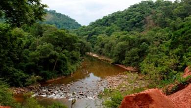 Photo of Experto: impacto ambiental en Tariquía será mínimo y mitigable