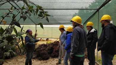 Photo of Destacan trabajo de conservación en Proyecto Hidroeléctrico Ivirizu