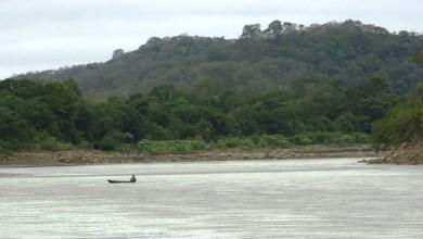 Photo of Evo da por hecho represas del Chepete, Bala y Rositas