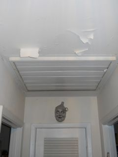 The Paint Was Peeling Off The Ceiling In This Building Science Mystery House.
