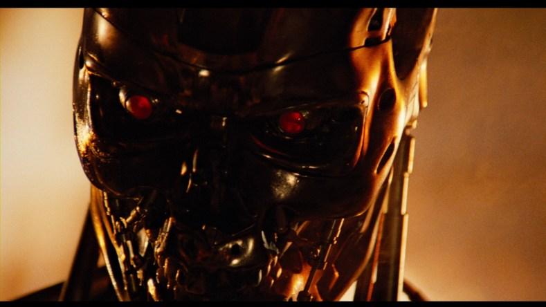 Terminator in flames