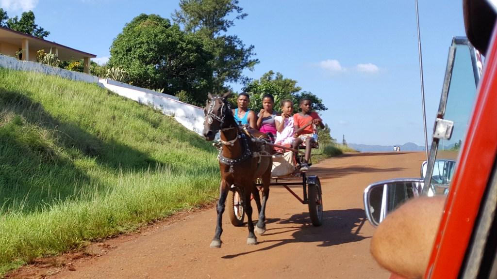 Horsecarrige in Cuba