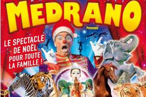 grand-cirque-noel-2015-BORDEAUX