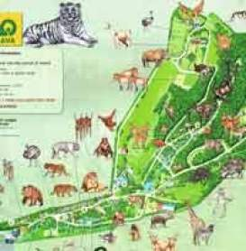 Plan-du-zoo-et dinopark de-Bratislava