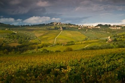 voyage-en-toscane-en-famille-italie-chianti