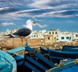 guide-famille-voyage-maroc-essaouira