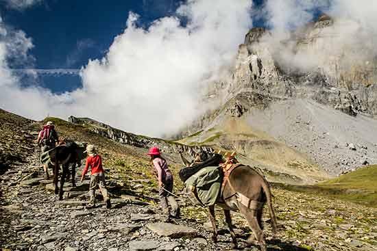 randonnée-avec-un-ane-famille-alpes