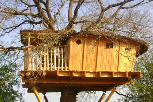 Cabane dans les arbres en famille - Cabane dans les arbres pour enfants ...