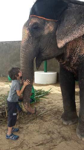 voyage-rajasthan-inde-fort-enfant-et-éléphant