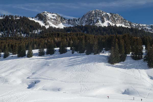 plateau-des-glières-hiver