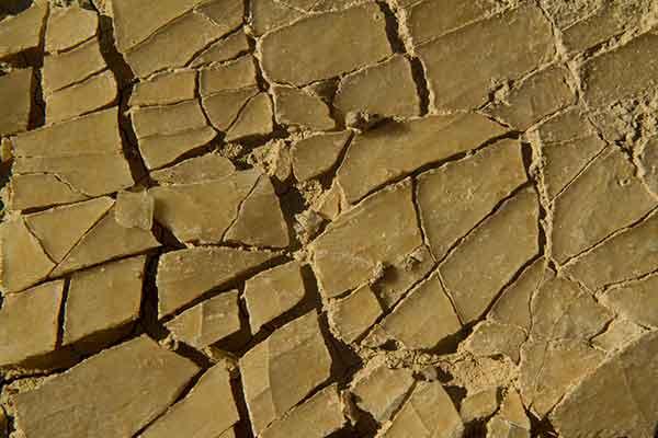 plaque-boue-séchée-desert-bardenas-espagne