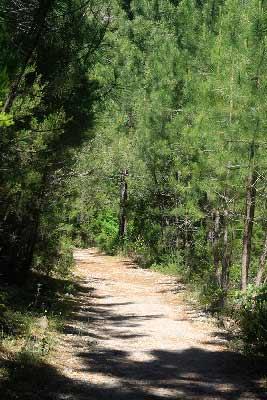 sentier-canaglia-en-Corse