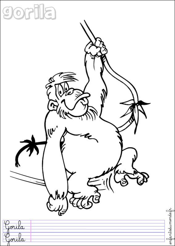 coloriage de singe lewismasonic