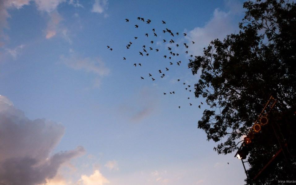 07 cielo de Punta Braba Cuba