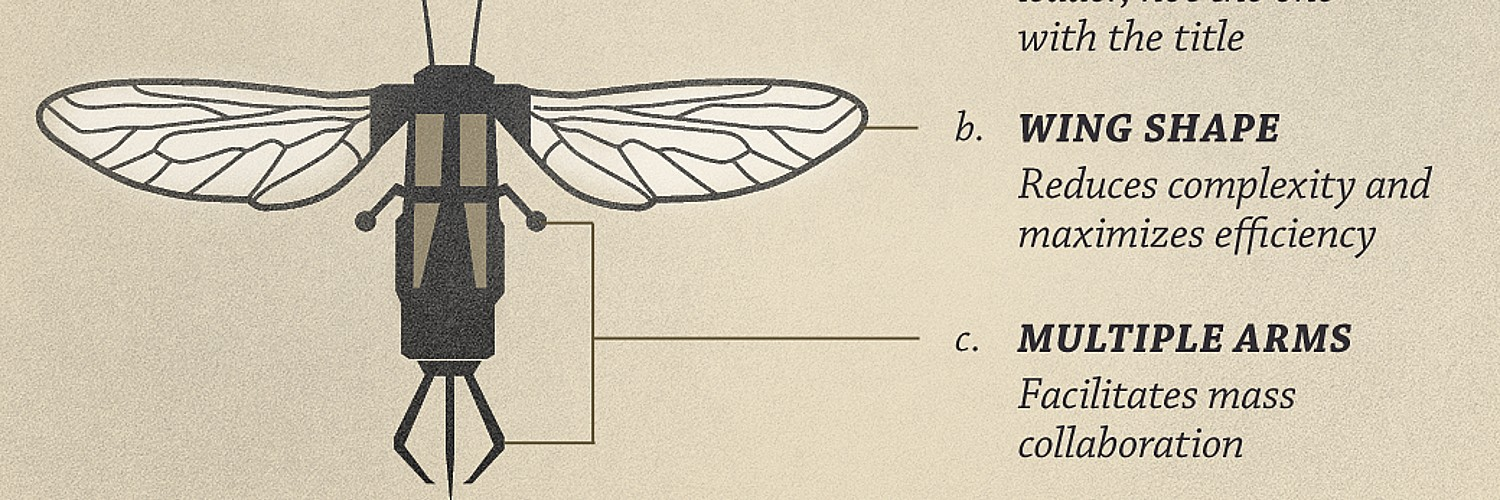 Diagram Of A Robot Insect