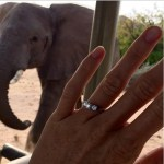 Helen Glover's Three-Stone Round Cut Diamond Ring