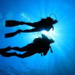 Looking for a Diamond? Try Scuba Diving!