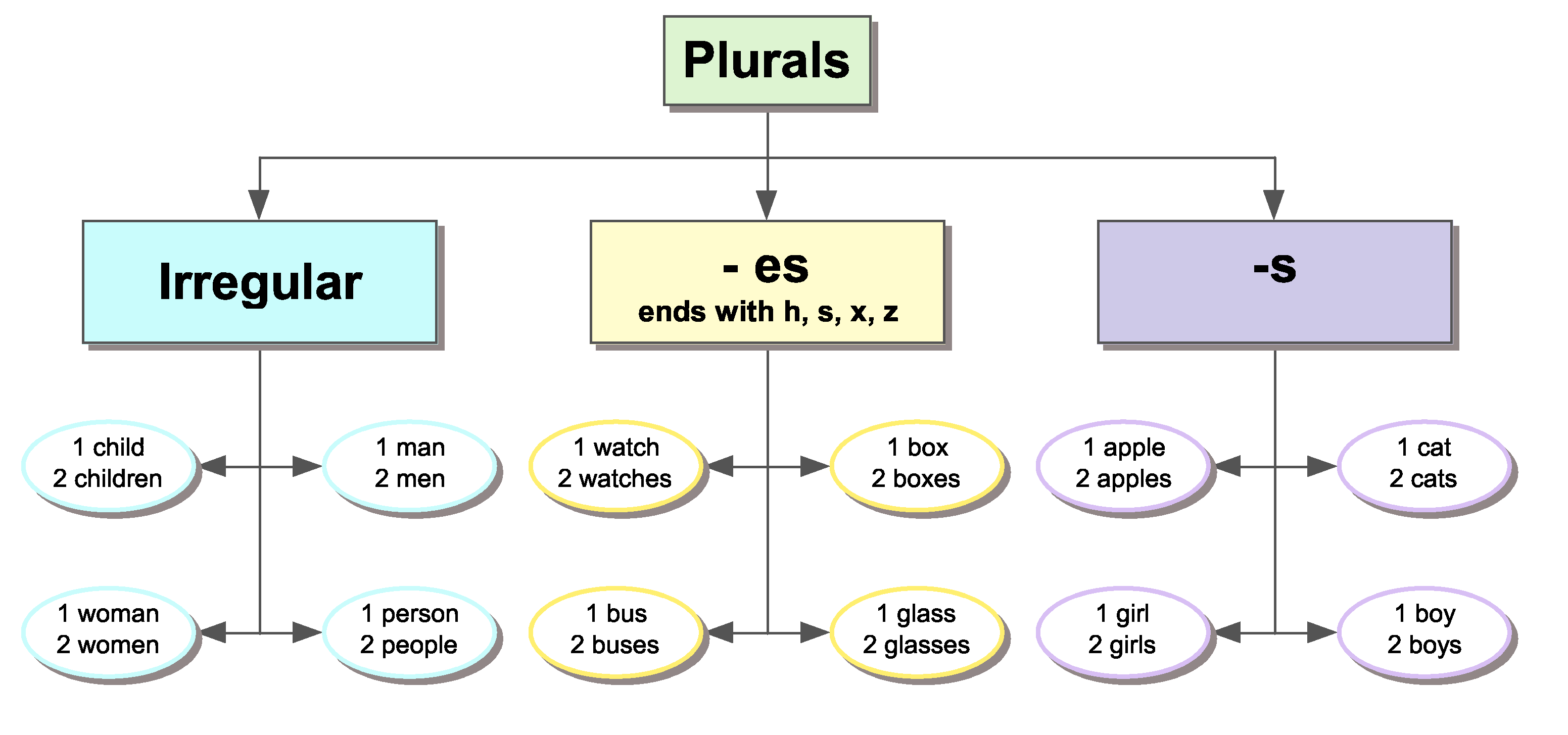 Plurals For Elementary Students