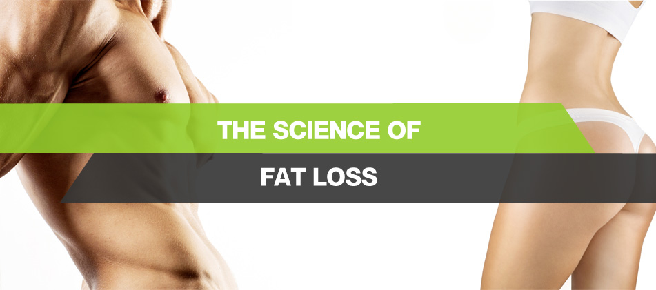 What Happens to Your Fat When You Lose Weight