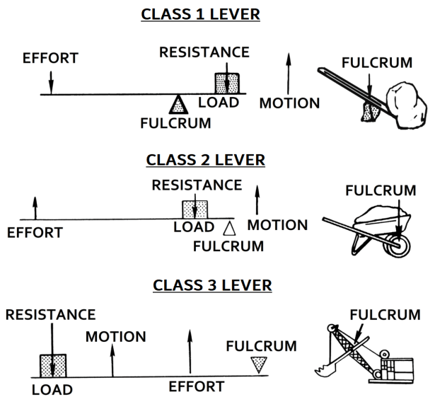 Types of Lever
