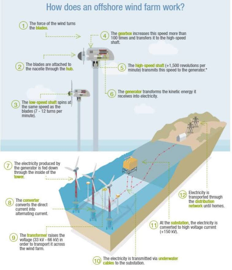 How Offshore Wind Turbine Work Step by Step