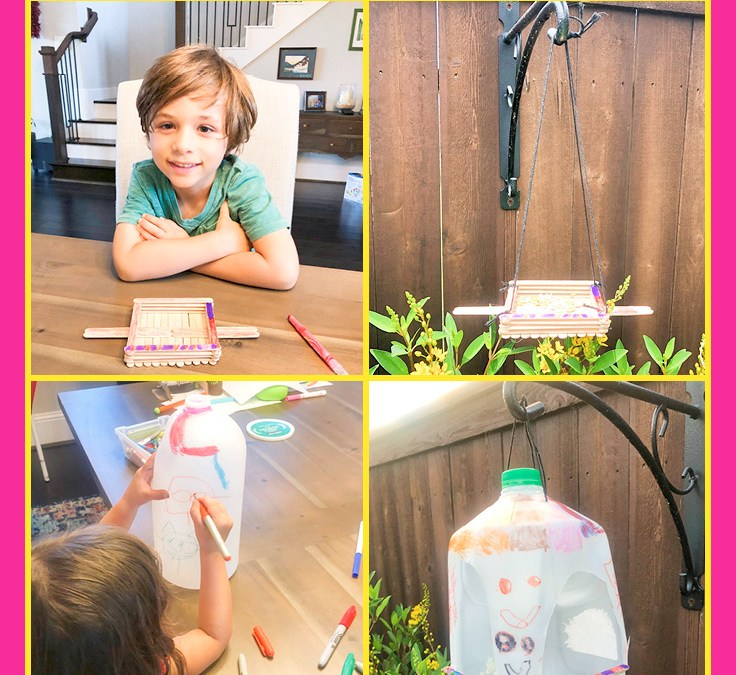 Make a Bird Feeder | STEAM Activity for Kids