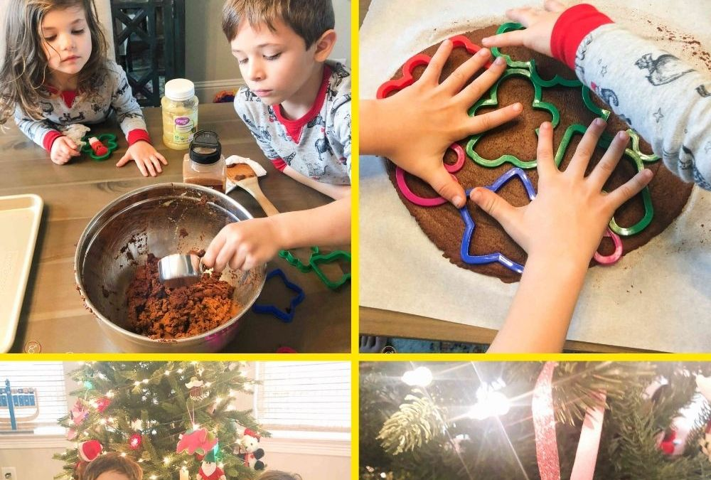 Cinnamon Ornaments | STEAM Activity for Kids