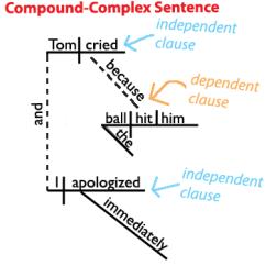 Easy Tree Diagram Worksheet 480v To 120v Transformer Wiring The Compound-complex Sentence