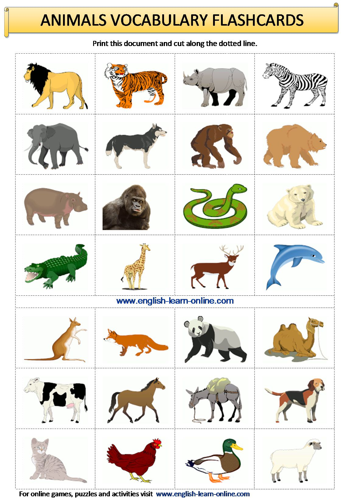 Animals Vocabulary In English