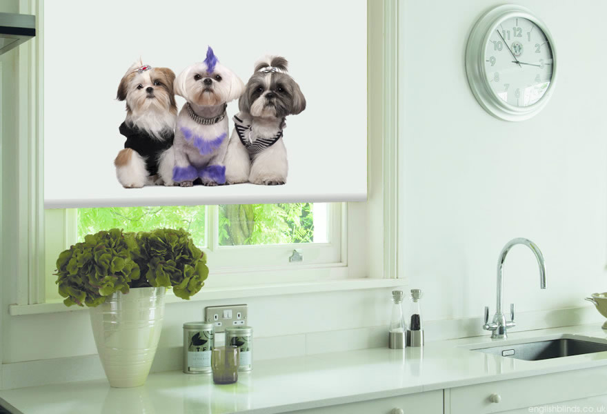 Cute Animal Print Blinds Made to Measure by English Blinds