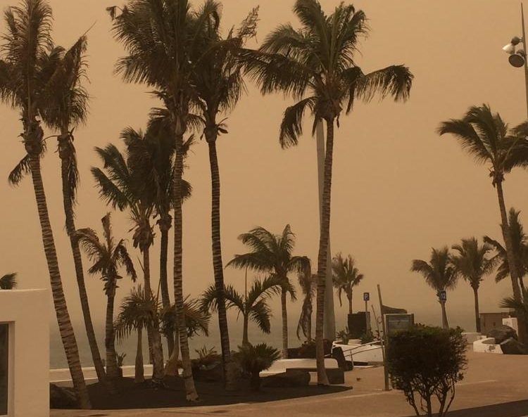 Calima worst in 40 years as Canaries recover from sandstorm