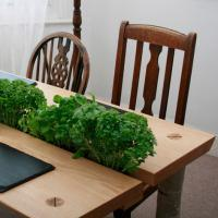 forge creative herb-dining-table-garden-plants-centre-wood-furniture